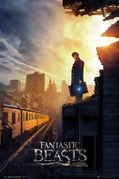plakat FANTASTIC BEASTS - ONE SHEET