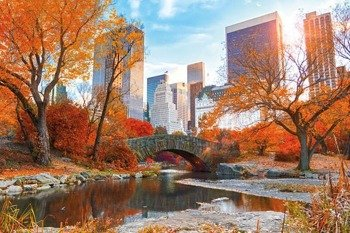 plakat NEW YORK - CENTRAL PARK AUTUMN