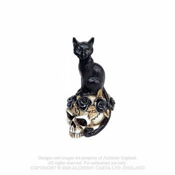 dekoracja CAT SKULL