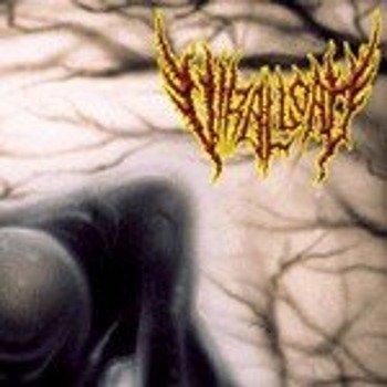 płyta CD: VIRAL LOAD - PRACTITIONERS OF PERVERSION