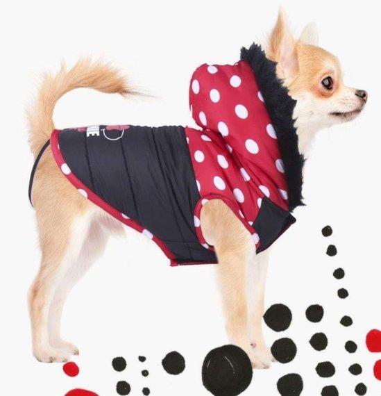 bluza dla psa MINNIE